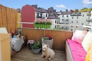 balcon-terraza
